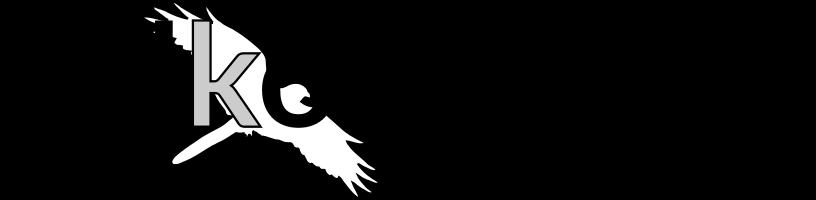Falkon-Ware Logo
